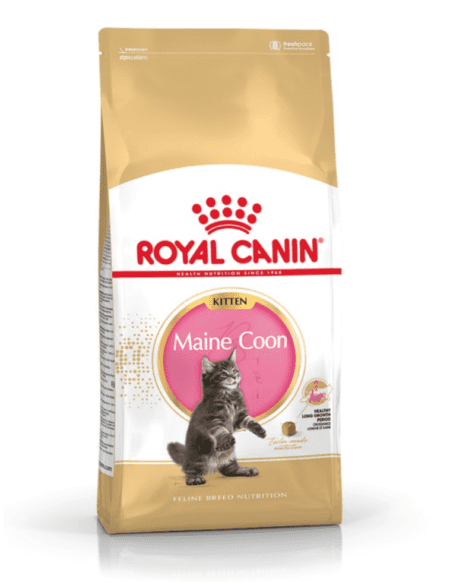 Royal-Canin-Maine-Coon-Kitten-Food